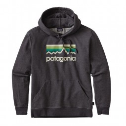 Patagonia M´s Line Logo MW Hoody
